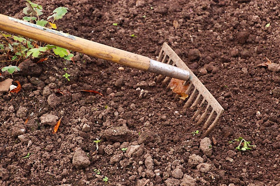 Les outils indispensables du jardinier